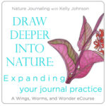 Refine drawing and painting technique, strengthen your personal connections with the nature outside your door, expand your sense of wonder, and solidify your nature journal practice. Click through to learn how with Wings, Worms, and Wonder!