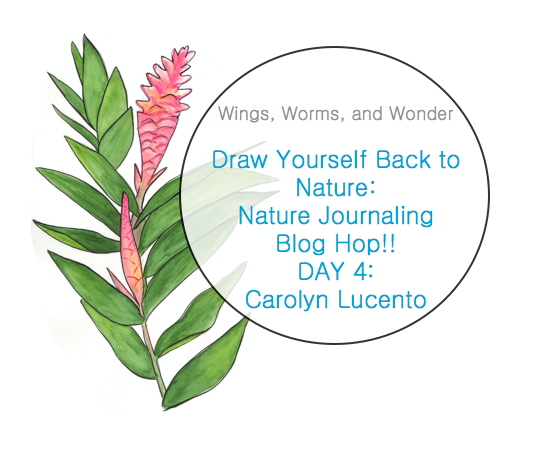 Join the Wings, Worms, and Wonder blog hop! Click to check out the awesome nature journal tutorials!