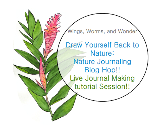 register for the Draw yourself Back to Nature ecourse! https://www.etsy.com/listing/226814219/draw-yourself-back-to-nature-art?ref=shop_home_feat_3