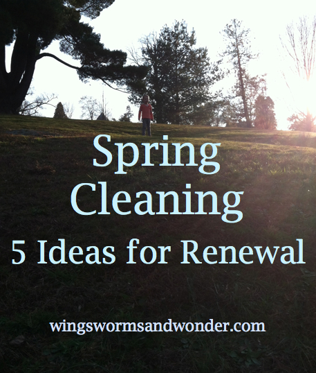Simplify life for spring. Click to get ideas from WIngs, Worms, and Wonder!