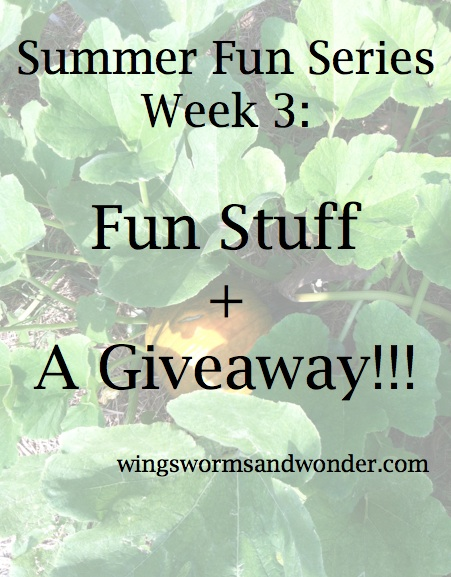 It's week 3 of the Summer Fun Series and this week we're taking a look at some fun stuff! From books to paint to a giveaway, click to check it out!