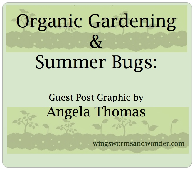Keep those summer garden bugs at bay, organically! Check out this guest post graphic by Angela Thomas!