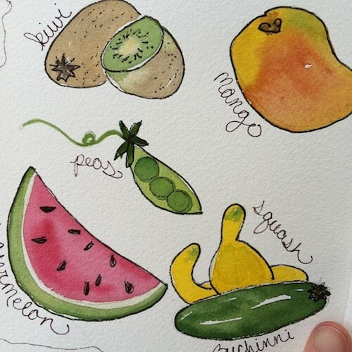 fruit-illustrations