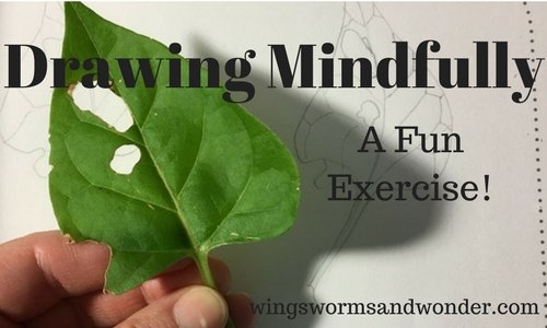 Practice giving the task at hand full focus, even if it gets boring. Mindfully observe, draw, and revel in what follows! Try this mindful Wings, Worms, and Wonder drawing exercise for yourself!
