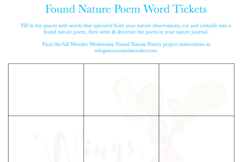 Since this month is National Poetry Month, we're going to have a little Wonder Wednesday fun with found poetry! Click to get your Wings, Worms, and Wonder creative nature connection activity!