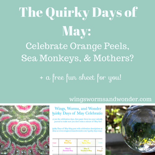 I discovered a list of so many quirky celebration days in the month of May! Click to laugh your way through May and get a Nature Journal prompt pdf funsheet!