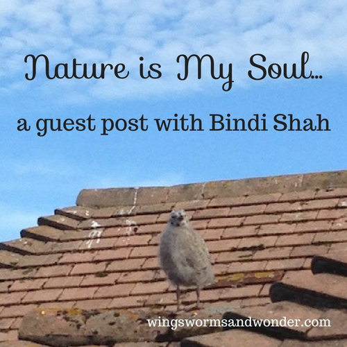 How do you hear nature's soul whispers? Learn more about connecting in this week's inspiring guest post by Bindi Shah!