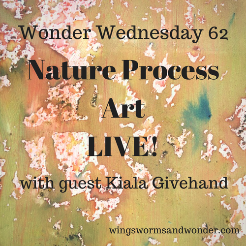 This Wonder Wednesday 62, we go LIVE with Kiala Givehand and make folded nature journals and fun nature inspired process art!