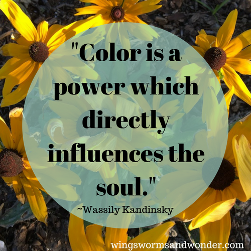 Learn more about color and color theory in the Exploring Color With Wing 3 part blog series! Click to start applying more color theory to your art making and nature experiences!