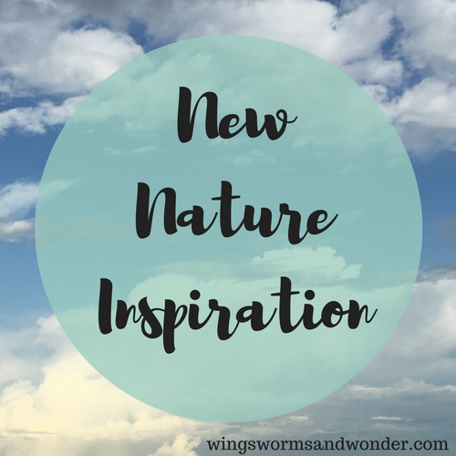 The last month of the year we work to tie up loose ends and accomplish outstanding goals. Click to check out new creative completion inspiration!