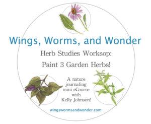 herb studies workshop logo graphic big
