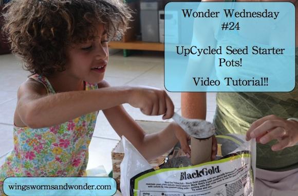 wwed upcycled webgraphic 580