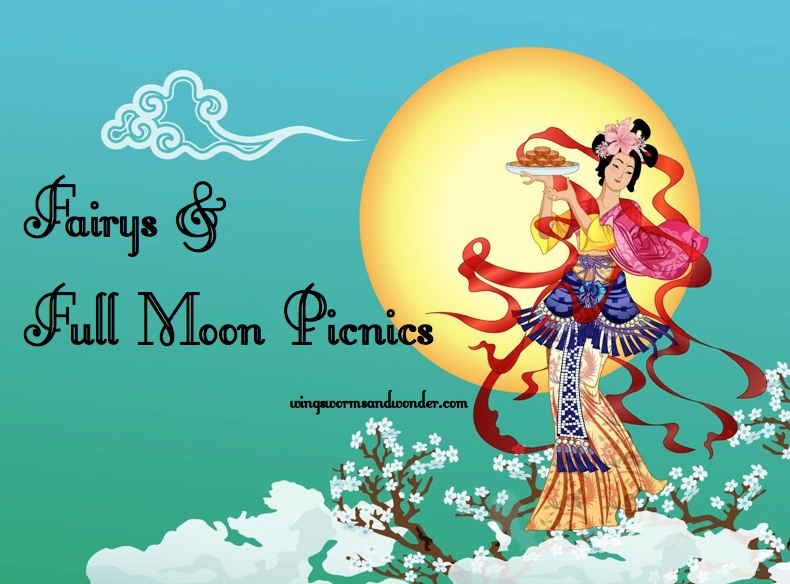 fairy full moon webgraphic