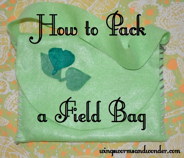 field bag graphic