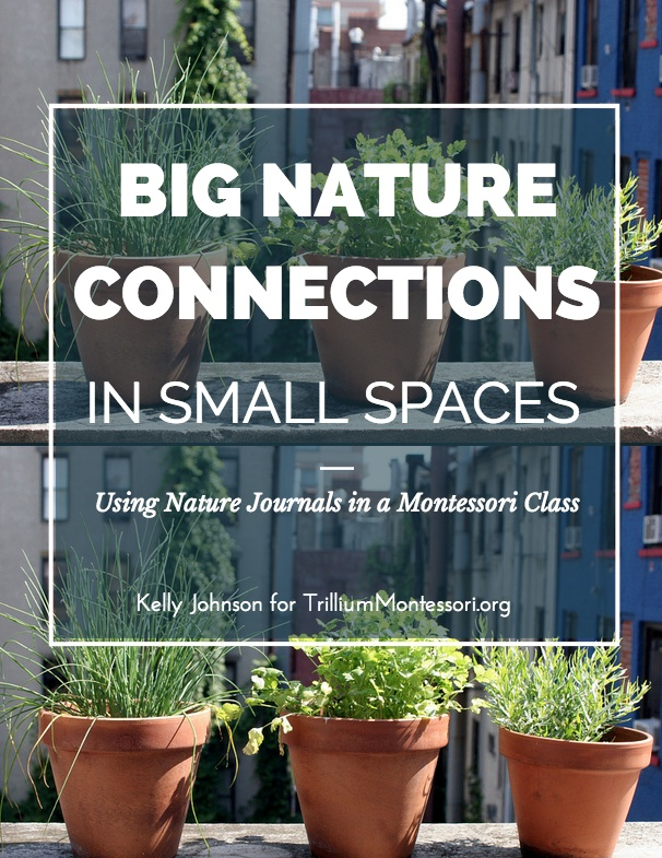trillium Big Nature COnnections In Small Spaces by Kelly Johnson (1)
