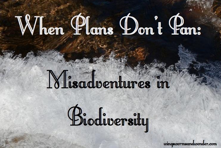 misadventures in biodiversity