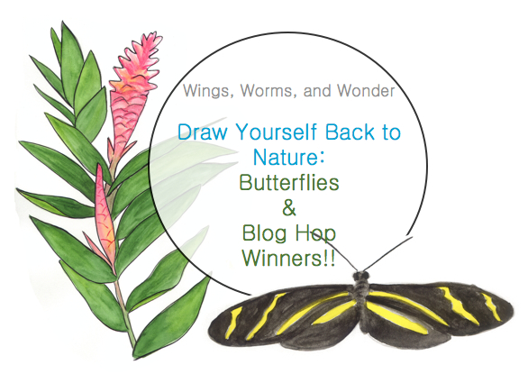 butterflies and winners graphic