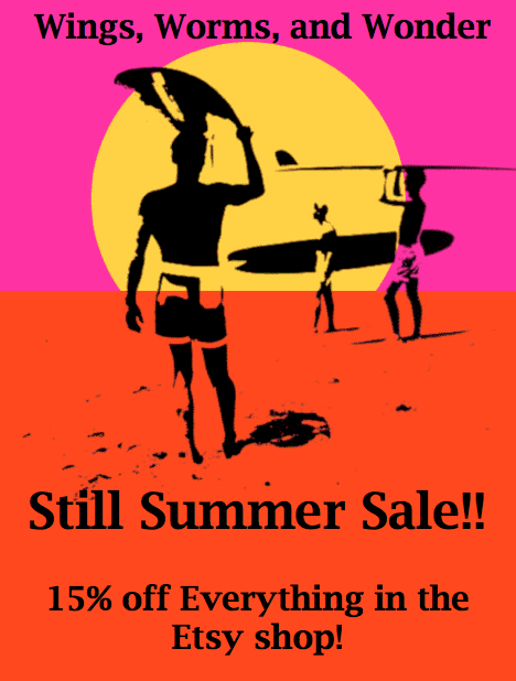 still summer early promo graphic