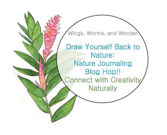 Join the Draw Yourself Back to Nature Blog Hop October 5-9! Click through for links, details , and prize info!