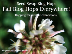 "Marketing often feels creepy and telling people about the cool things you offer can feel embarrassing. So why are blog hops awesome? Creativity, connections, authenticity, virtual garden parties, and getting the word out! Click through to learn more about the connection and creative ""marketing"" fun of blog hops!"
