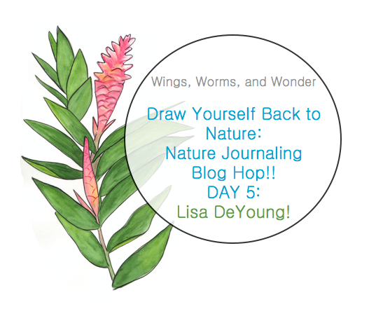 Join the Wings, Worms, and Wonder blog hop! Click to check out the awesome nature journal tutorials!!