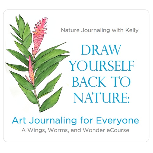 Creatively connect with nature through journaling! Click to learn more https://www.wingswormsandwonder.com/draw-back-nature-info/