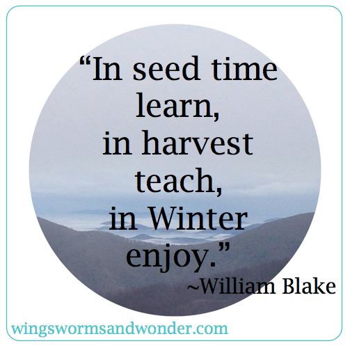 For much of the world winter is the time to enjoy relaxing and reflecting on garden successes and challenges, but in the warm climates, winter is when vegetable gardening really ramps up! Click through to learn more about enjoying winter gardening