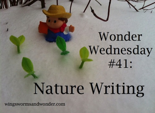 Let nature inspire writing in all seasons! Click through to get a free nature writing activity!