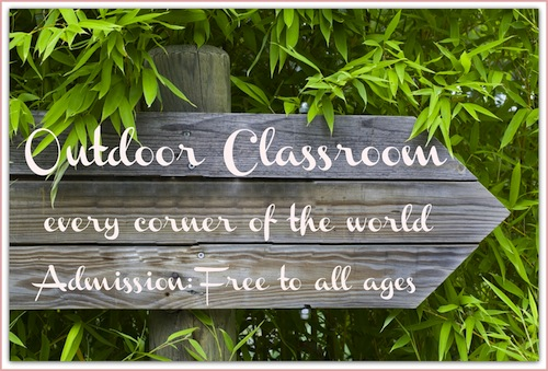 Get ideas for teaching lessons outside in this post!