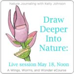 Join me for an hour of fun free nature journaling fun!! And win prizes too! Click through to register!