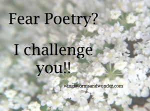 I challenge you to write one nature poem this month! Click through to get some great ideas and formats from Wings, Worms, and Wonder!