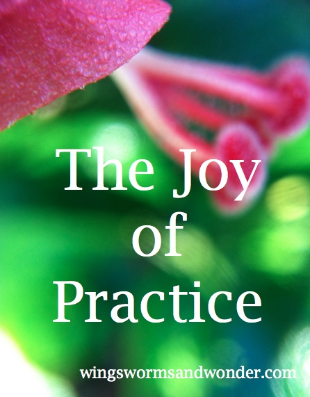 It's very easy to forget the joy that comes from practice in hurried daily life. Click through to get ideas from Wings, Worms, and Wonder on how the practice of practice brings peace and joy to daily life!