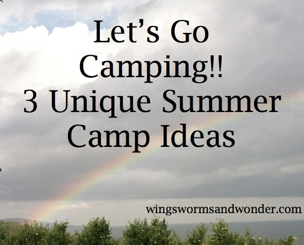 Give your kids the life enhancing gift of summer camp! Click here for some unexpected ideas!