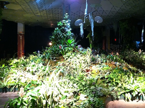 Learn how the Lowline is balancing nature and technology in NYC! Click to discover more!