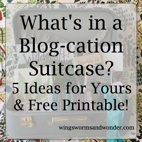 What's in a Blog-cation Suitcase? 5 Ideas & Printable!