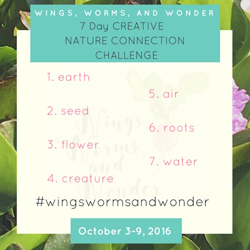 Join the Wings, Worms, and Wonder 7 Day Creativity Instagram Challenge! Click here to get the details and join the fun!