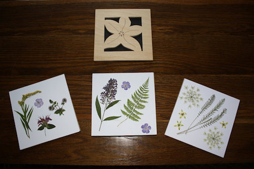 A review and giveaway of this hand carved and crafted flower press by Wings, Worms, and Wonder nature journaling colleague Rob Terry! Click through to learn more and enter to win!