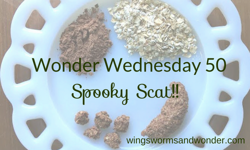 Make fun spooky edible scat while learning to ID the local critters! Click through for the Wings, Worms, and Wonder Wonder Wednesday activity and recipe!