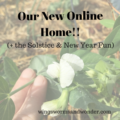 Check out the new online home of Wings, Worms, and Wonder! And clickthrough for winter solstice fun ideas & last minute holiday discounts!