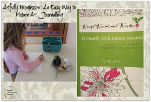 Check out this awesome blog post by the Montessori inspired Magical Movement Company! It's chock full of great ideas on fun ways to nature journal indoors in cold months!