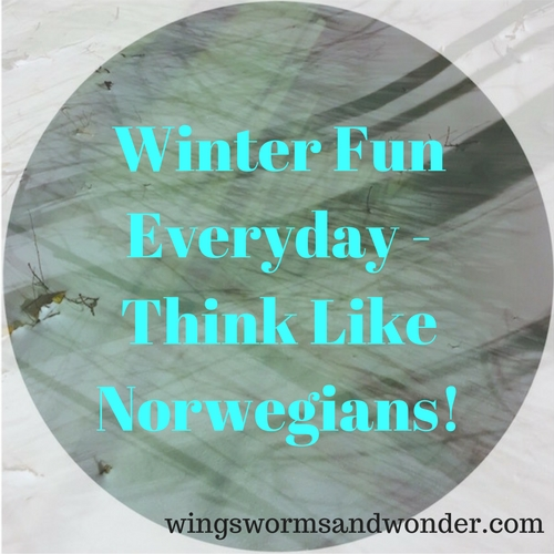 Get some wacky weather Norwegian outdoor adventure inspiration! Click through for ideas for tons of Wings, Worms, and Wonder winter outdoor fun!
