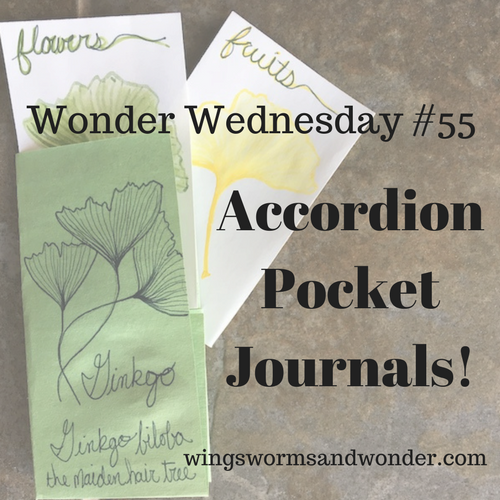It's Wonder Wednesday! Click to learn to make this Wings, Worms, and Wonder accordion pocket journal!