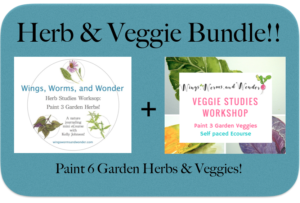 Learn how to draw nature in a relaxed way! Click and check out these course bundles in the Wings, Worms, and Wonder online school!