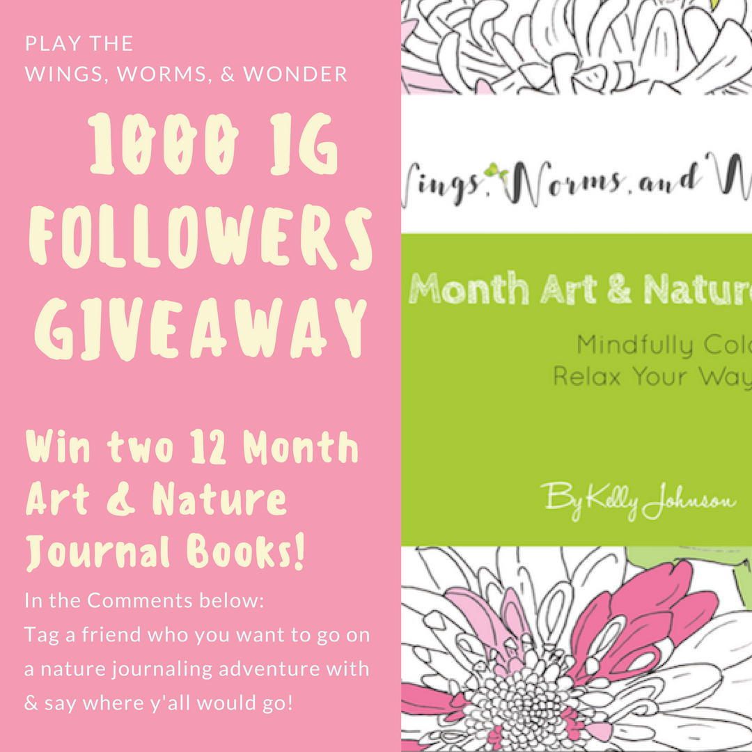 1K followers giveaway! Follow @wingswormsandwonder on IG to play along!