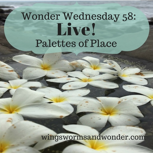 Join me live (or in the replay) and let's explore place connection through palette painting! Click for Wings, WOrms, and Wonder creative Wonder Wednesday nature connection fun!