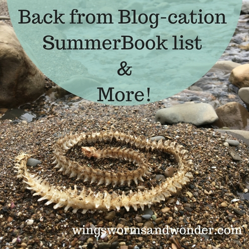 Wings, Worms, and Wonder has all the creative nature connection inspiration and resources waiting for you! Click to find all you need for summer nature connection fun!