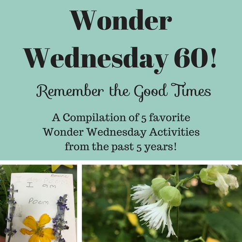 "o honor this Wonder Wednesday 60 post milestone, here's a ""remember the good times"" compilation of some of my favorite activities for you. Click to enjoy this compilation of Wonder Wednesday inspiration and fun!"