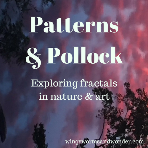 When you hear the term fractal patterns, what do you think of? Click to Learn more about the ways humans unconsciously intuit fractals inherent in art and nature in this blog post!