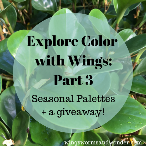 Welcome to week 3 of the Explore Color with Wings color theory series! Click to check out Seasonal palettes of color theory and make your own seasonal palette project!