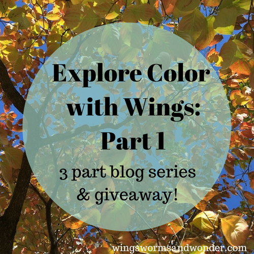 Explore color with wings 3 part blog series and contest! Click to expand your understanding and application of color theory in your nature art journaling!